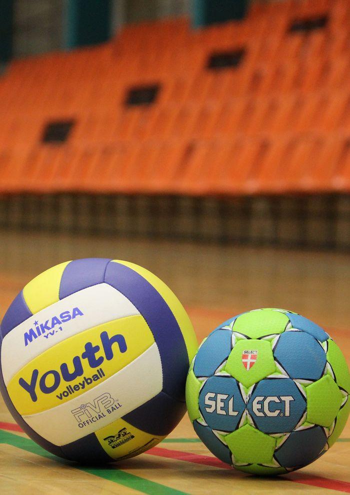 Match de championnat de handball